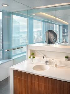 amazing-duplex-penthouse-bathroom