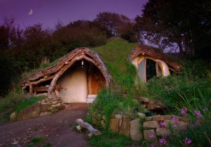 20-Perfect-Lonely-Little-Houses-Blending-in-Nature-For-The-Quiet-Calm-Solitary-Souls-homesthetics-2