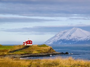 20-Perfect-Lonely-Little-Houses-Blending-in-Nature-For-The-Quiet-Calm-Solitary-Souls-homesthetics-3