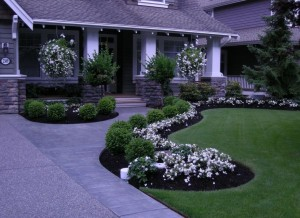 neutral-lines-front-yard