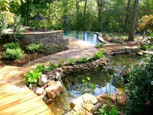 Natural-Landscape-Pool