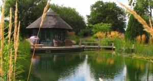 Radwinter-Natural-Pool-