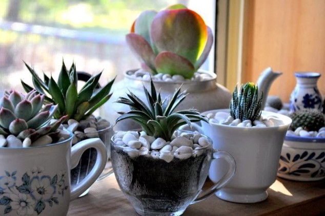 идеи за цветята в дома