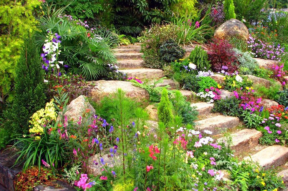 идеи за градината 10