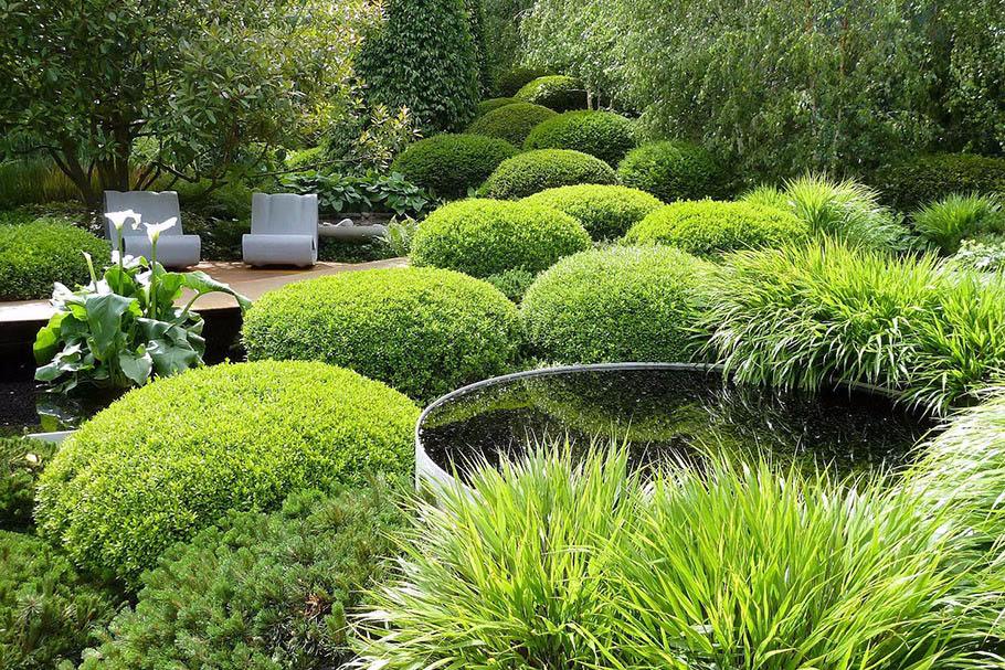 идеи за градината 6