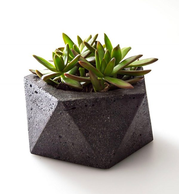 бетонни саксии